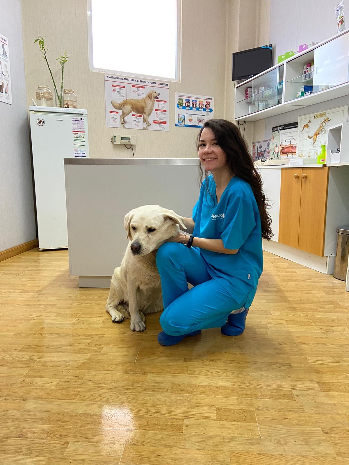tamara veterinaria