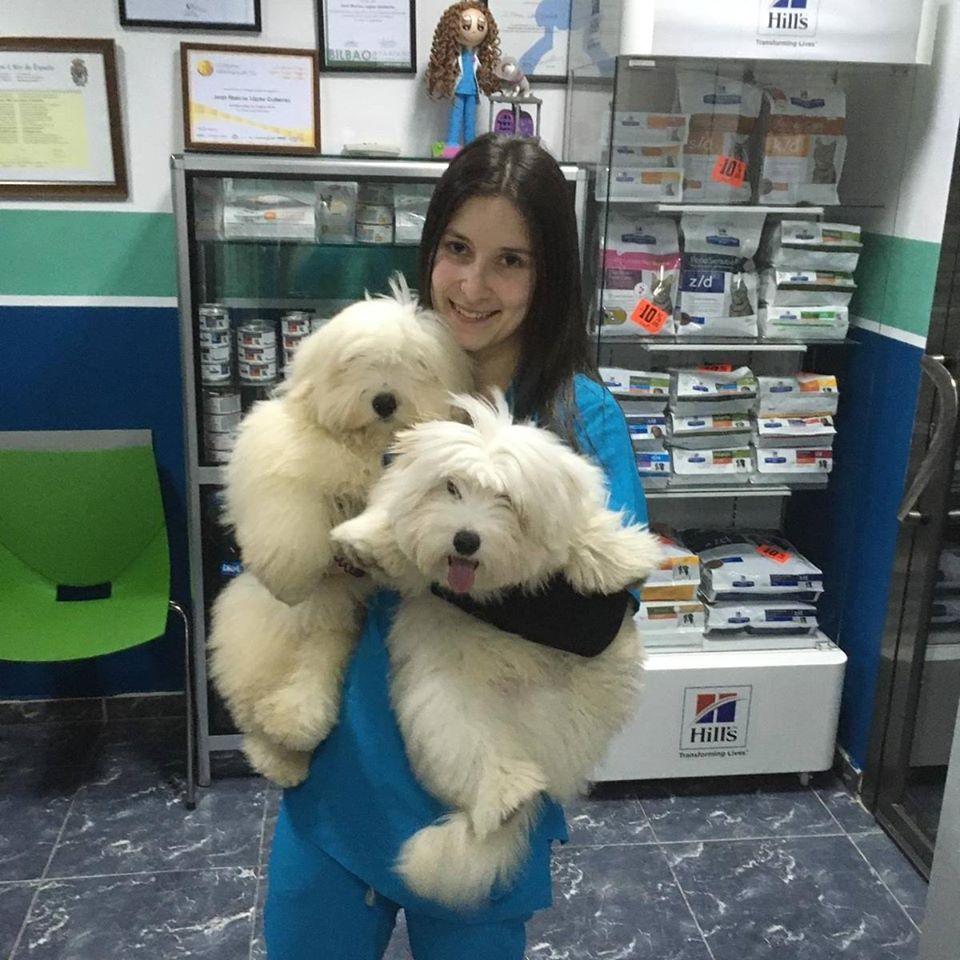 veterinaria-andrea